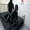 Rubber Enclosure Fetish ~ Lustful Rubber Harlem Rubber 3P Bed ~