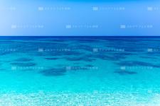 沖縄本島/大宜味のビーチ 218C6811